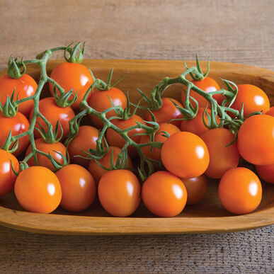 tomatoes_clementine