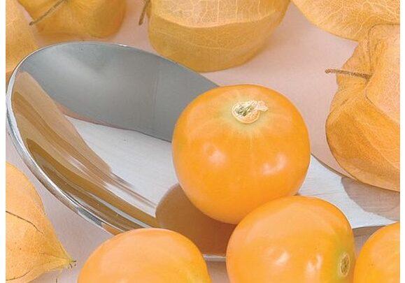 cliquezsur l'image pour voir la liste des variétés disponibles et des suggestions de recettes.